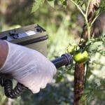 Radioprotezione ambientale